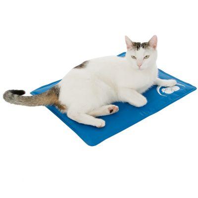 Kočka ležící na chladící podložce