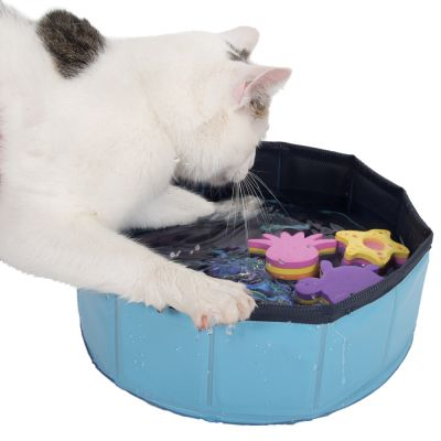 Kočka s bazénkem pro kočky