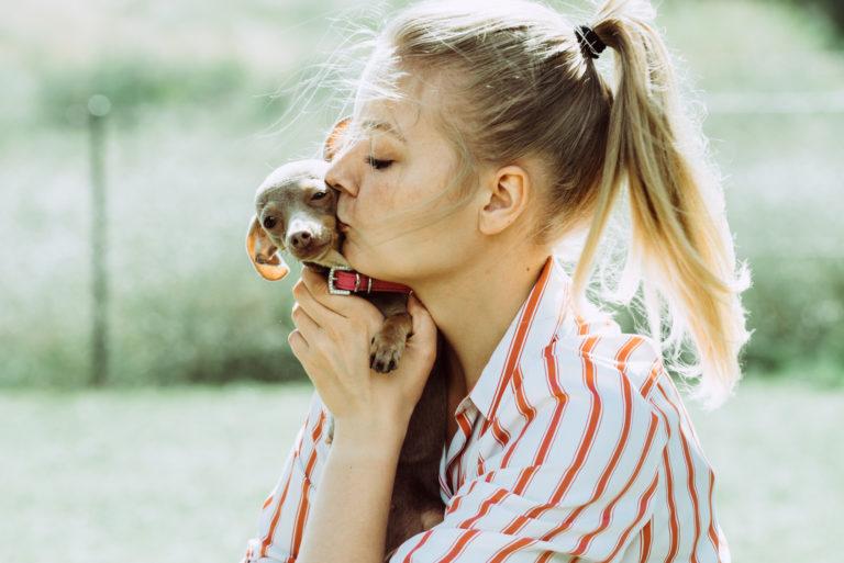 Pusinka pro malé štěně