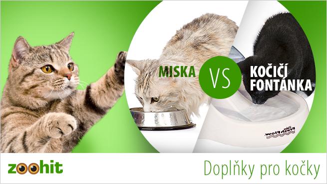 miska versus fontánka