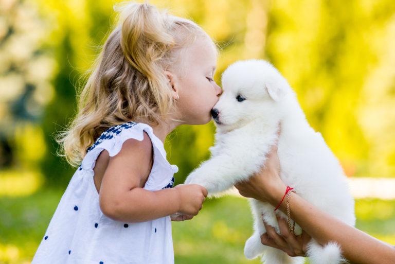 Pusinka holčičky a bílého štěňátka