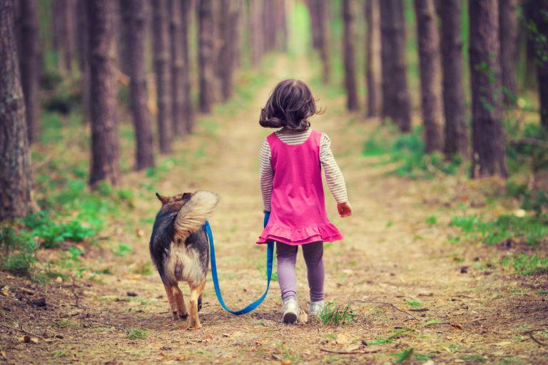 holčička na procházce se psem v lese