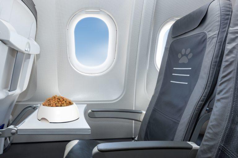 Granule v misce v letadle