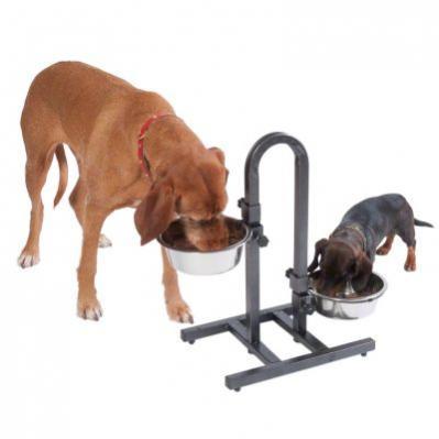 Dva psi jí z misek ze stojanu