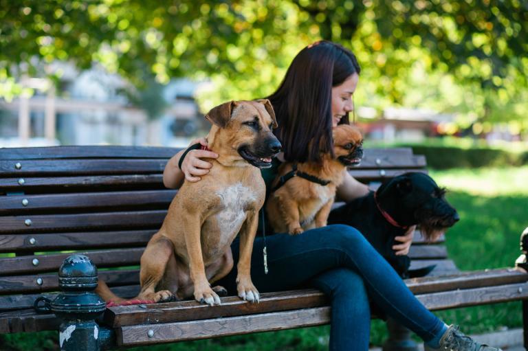 Opatrovatelka psů sedí se třemi psy
