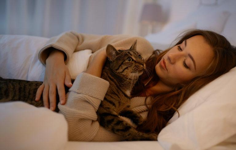 Kočka mňouká v noci