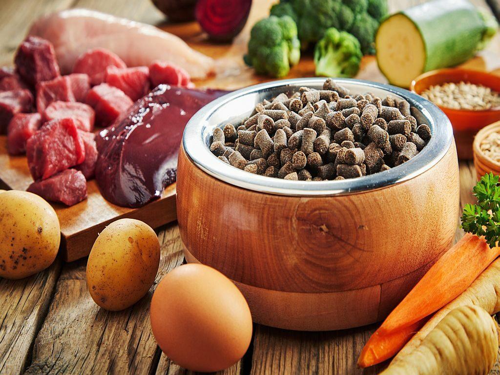 Superpotraviny pro psy