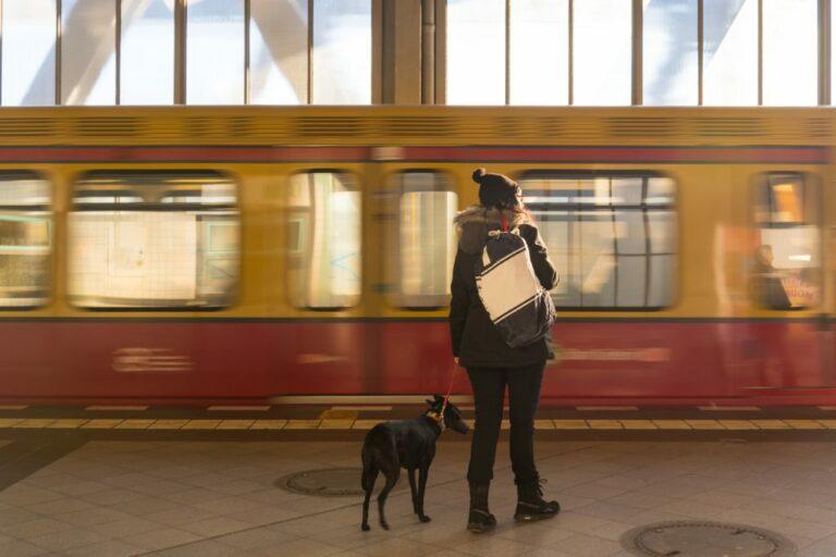 žena se psem na vlakovém nástupišti
