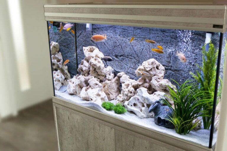 Akvárium v bytě