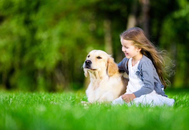 Dívka se zlatým retrívrem na trávníku