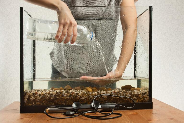 Zakládání akvária